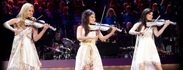 The String Diva